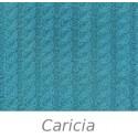 Carícia