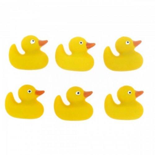 BF-Ducks