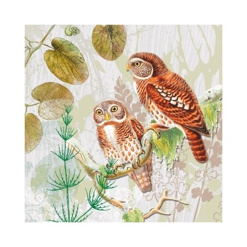 Guardanapo Pair of Owls
