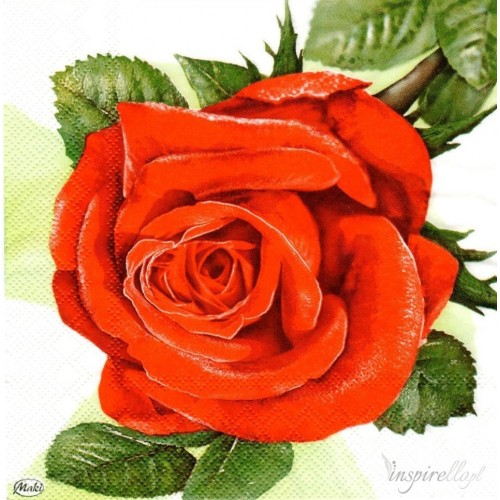 Guardanapo Big Red Roses