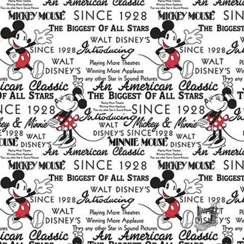 Mickey & Minnie With Words